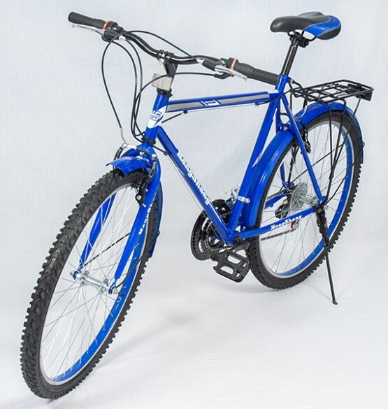 20 Inch Kids Bike – Blue